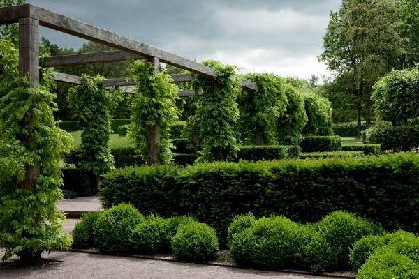 Work Meker Tuinen